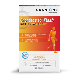 Chondrosteo Flash gélules