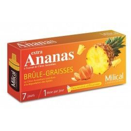 MILICAL EXTRA ANANAS BRULE GRAISSES