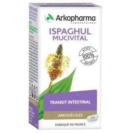 Arkogélules Ispaghul – 45 gélules